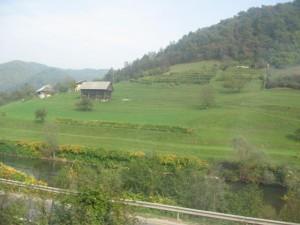 campagne en Slovénie, dans le train pour aller à Maribor
