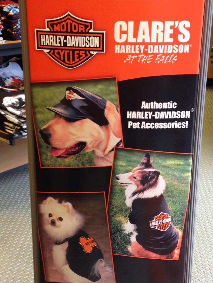 accessoire pour chien harley