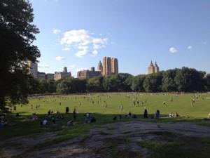 parc à Central Park l'été