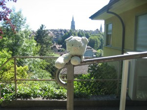 Nounou Bleu avec la vue sur les toits de Berne