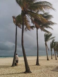 plage avec des cocotiers de Hollywood beach juste avant un orage
