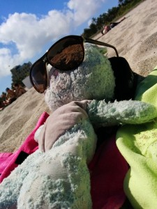 Nounou Bleu avec des lunettes de soleil sur la plage de Miami