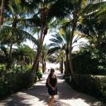 Sarah sous les cocotiers de Miami