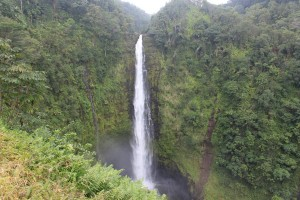 Akaka falls Big Island Hawaii