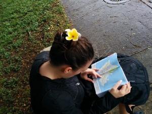fleur plumeria dans les cheveux