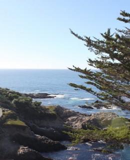 route le long de la côte du pacifique highway 1 de San Franscisco à Los Angeles