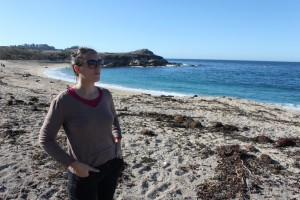 route le long de la côte du pacifique highway 1 de San Franscisco à Los Angeles plage